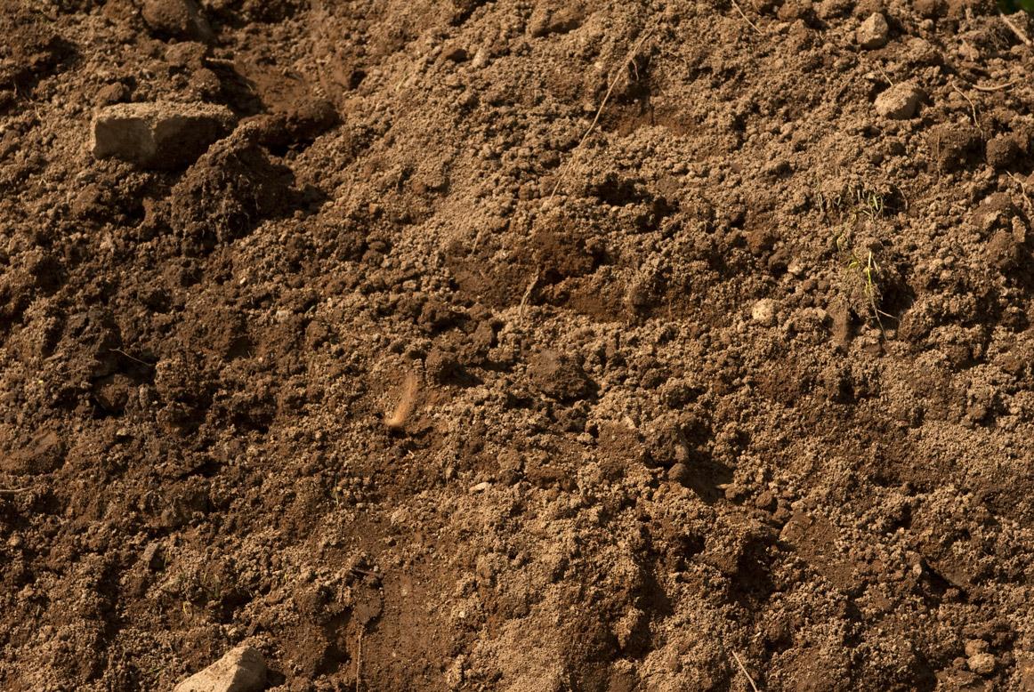 Ez landscaping solutions for Backyard soil